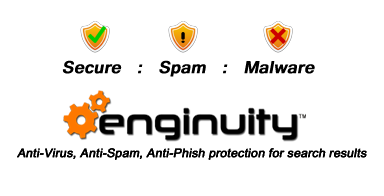 Enginuity Secure Search